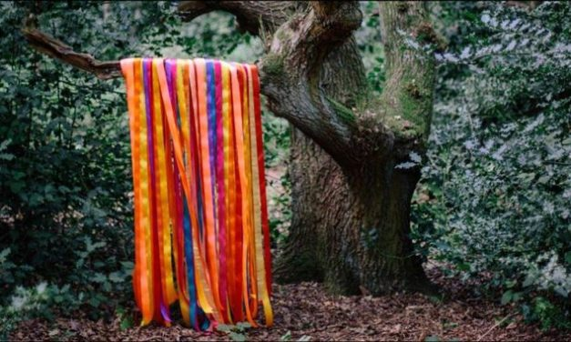 James Holden – The Animal Spirits 2017